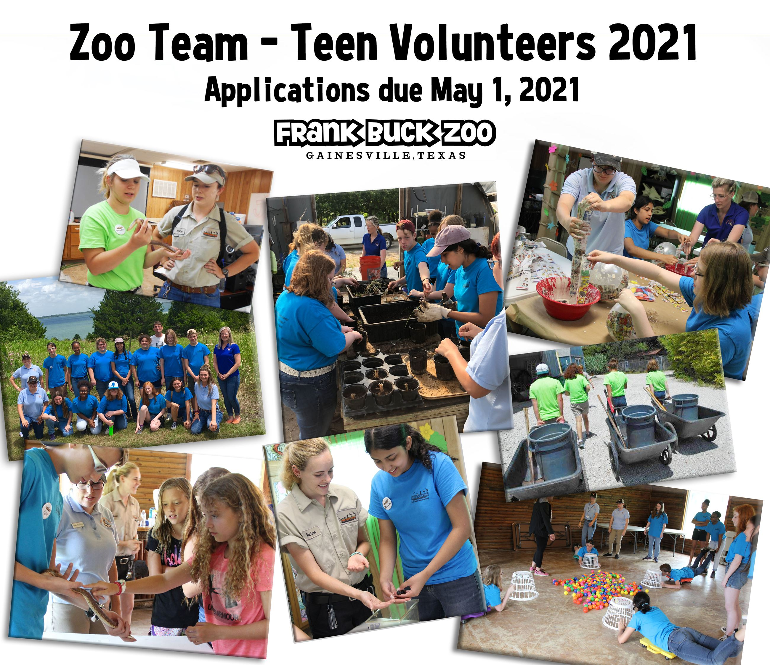 Zoo Team Flyer with Pictures of Zoo Team Activities