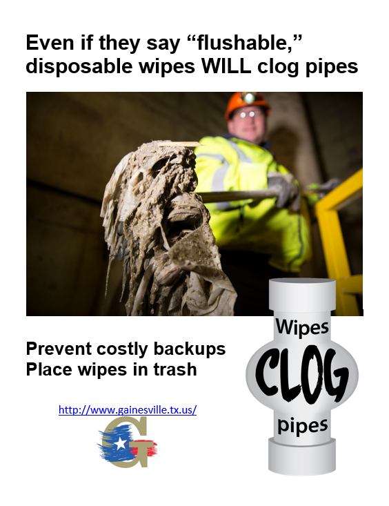 wipesclogpipes