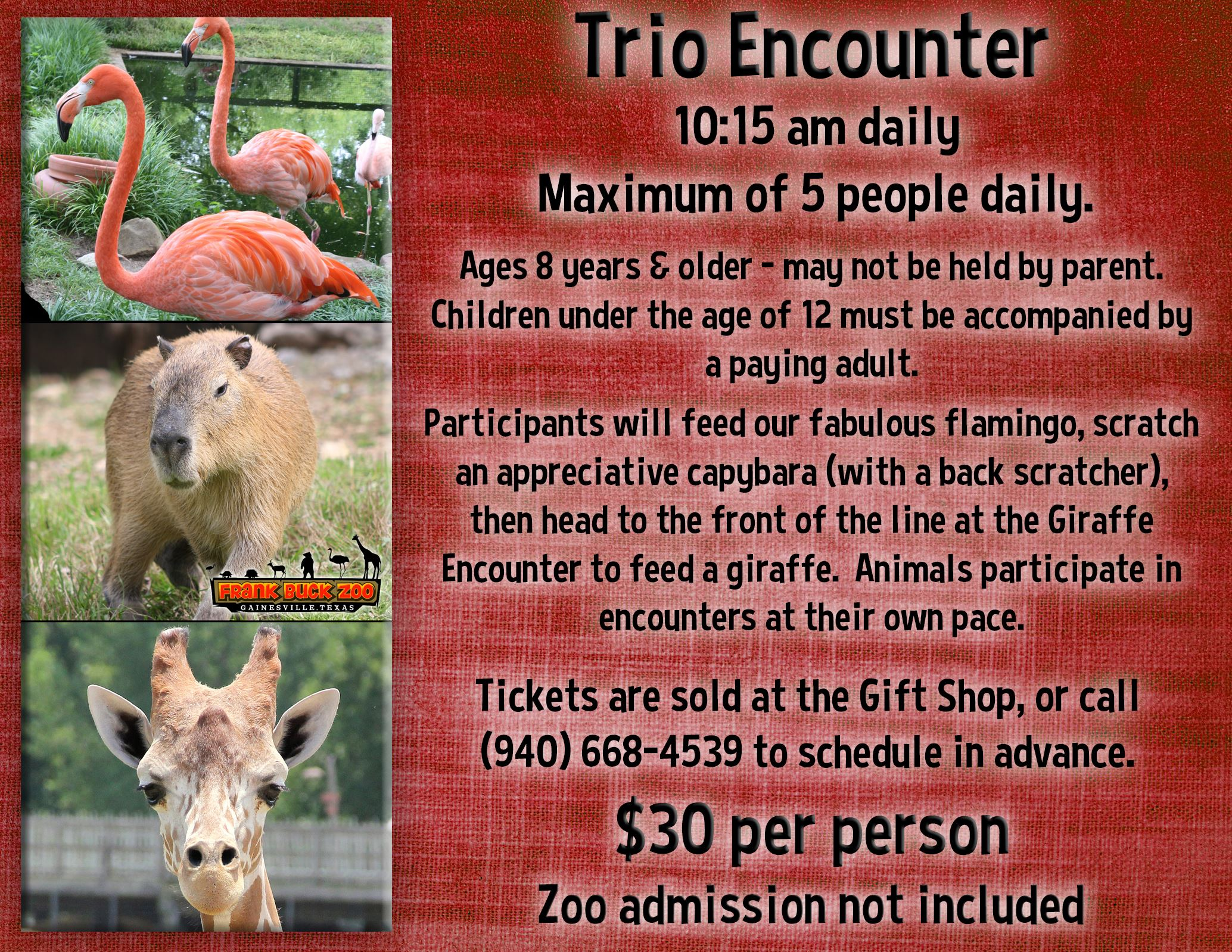 Trio Encounter